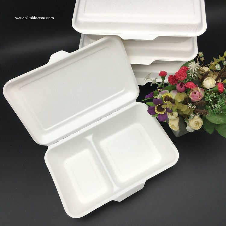 1000ml 2CP 100% Sugarcane Bagasse Biodegradable Disposable Food Box Take Away Lunch Box