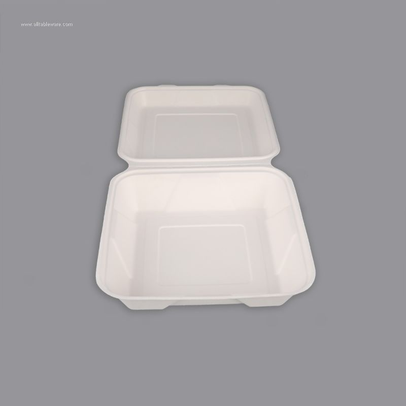 Bagasse Pulp 10 Inch 3 CP Food Box