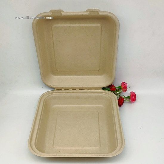 100% Biodegradable Tableware Disposable Food Containers 8 Inch