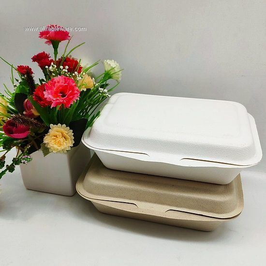 600ml Biodegradable Bento Lunch Box Disposable Food Container