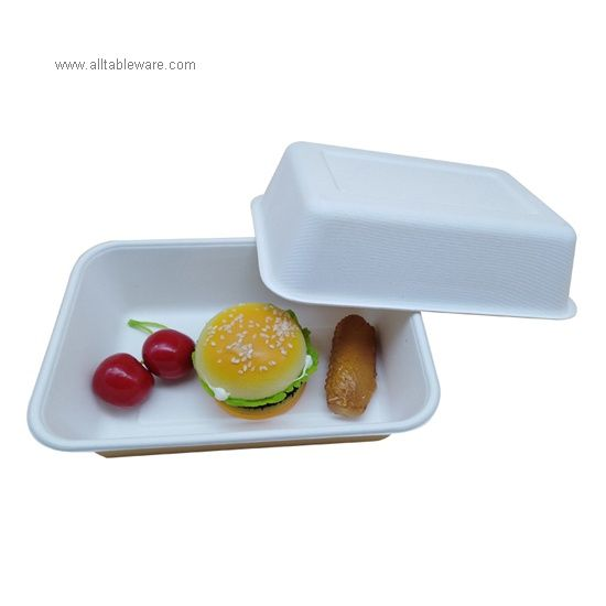 100% Compostable Disposable Biodegradable Bagasse Sugarcane Food Tray