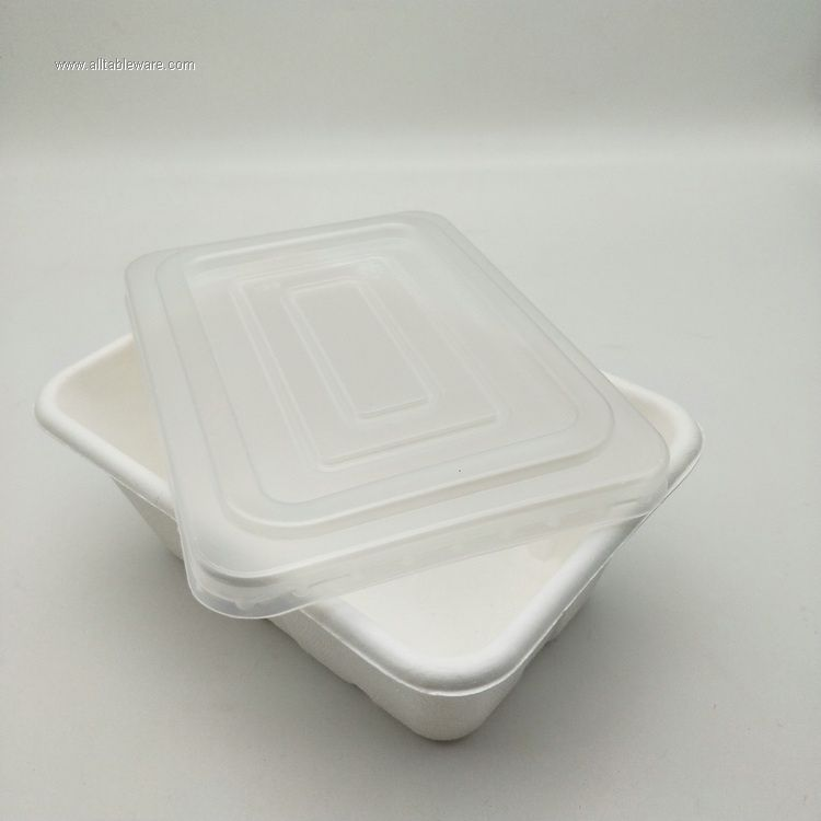 Sugarcane bagasse pulp disposable food tray,eco friendly disposable Food Conatiner