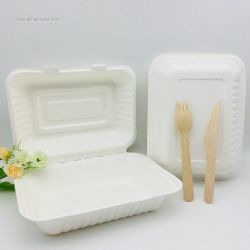 9x6 Inch Recyclable bagasse tableware take away box bagasse pulp clamshell