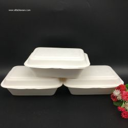 600ml Wholesale Disposable Box Biodegradable Take Away Box