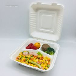8 Inch Wholesale 3 Compostable Custom Logo Paper Bagasse Lunch Box