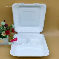 Biodegradable Sugarcane Tableware Bento Meal Box on Sale 9 Inches