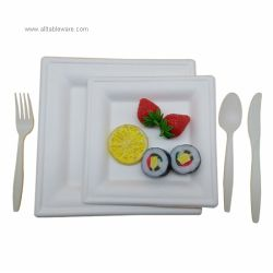 Biodegradable Tableware Disposable Sugarcane Bagasse Square Plates