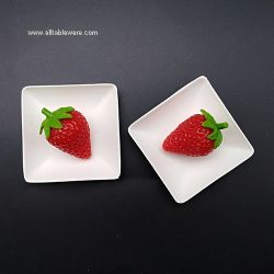 Compostable Biodegradable Disposable Mini Square Sugarcane Bagasse Plate