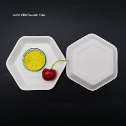New Design Sugarcane Bagasse Tableware Biodegradable Disposable Cake Plate