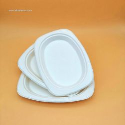 Biodegradable Compostable Disposable  Sugarcane Bagasse Oval Plate