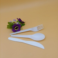 Environmentally Friendly Biodegradable PLA Disposable Tableware Set
