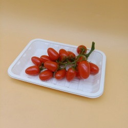 High quality disposable cornstarch takeaway tray