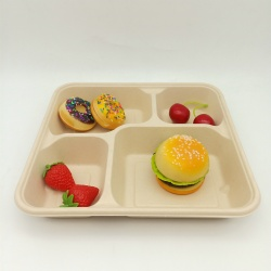 100% Biodegradable Sugarcane Pulp Four-Compartment Tray