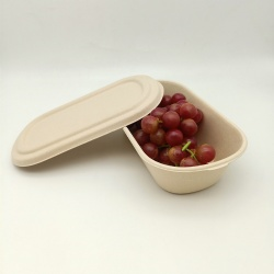 High Quality Sugarcane Pulp Disposable Food Box with Lid