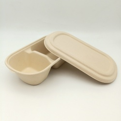 100% Biodegradable Sugarcane Pulp Two-Compartment Food Box