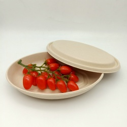 Biodegradable sugarcane pulp three-compartment tray with lid