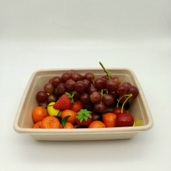 100% Biodegradable compostable compartment sugarcane bagasse fruit tray