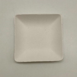 Biodegradable sugarcane bagasse square shape sauce plate