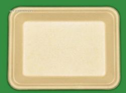 350ml sugarcane biodegradable tray